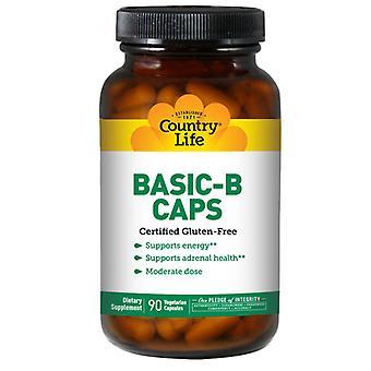 Country Life Basic B (B Complex), 25 MG, 90 Caps
