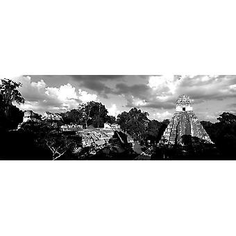 Rauniot vanha temppeli Tikal Guatemalassa Juliste Tulosta