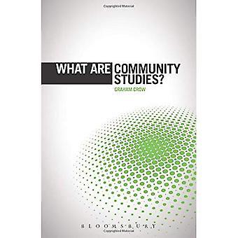 ¿Qué son los estudios de comunidad? (el ' ¿Qué es?' Serie de métodos de investigación)