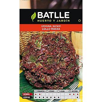 Batlle Lollo Rossa Lettuce (Garden , Gardening , Seeds)