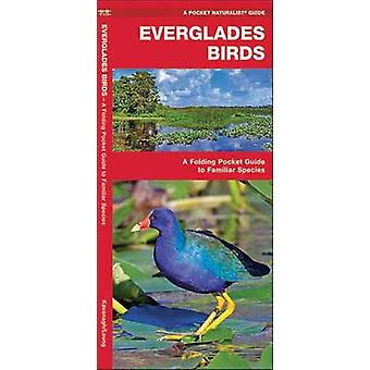 Everglades Birds - A Folding Pocket Guide to Familiar Species by James