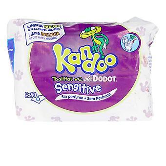 Moist Wipes Kandoo Dodot (100 uds)