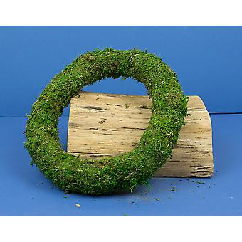 Green Moss Natural Wreath Ring - 25cm/10in Wide