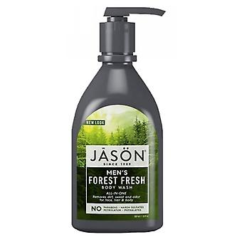 Jason Natural Products Mens All in One Body Wash, 30 Oz Froest Fresh