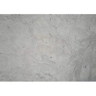 Wallpaper mural Grunge sement vegg
