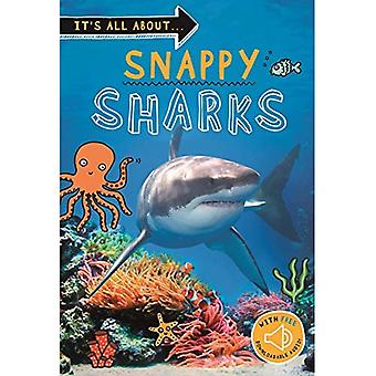 It's All About ... Requins Snappy - It-apos;s All About ...