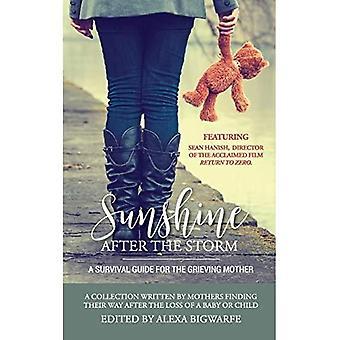 solskin efter stormen: en overlevelse guide til sørgende mor