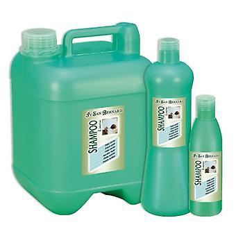 San Bernard Green Tomato Shampoo (Pomodoro Verde) 1000Ml