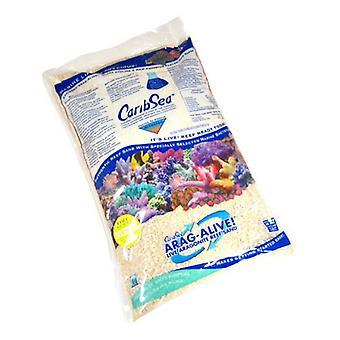 CaribSea Arag-Alive Live Aragonite Reef Sand - Special Grade Reef Sand - 20 lbs