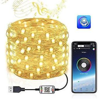 2/5/10/12/15/20M christmas tree fairy light string party lights waterproof rgb lamp