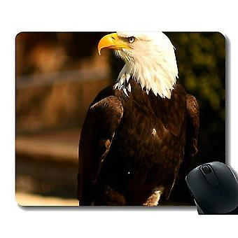 Mouse pads 260x210x3 gaming mouse pad custom skying bald eagle office mouse pad