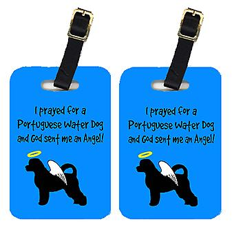 Carolines Treasures  AN1090BT Pair of 2 Portuguese Water Dog Luggage Tags