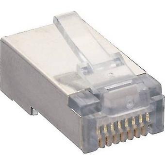 Lumberg P 129 S Modular Plug 8p8c RJ45 Plug, straight Transparent