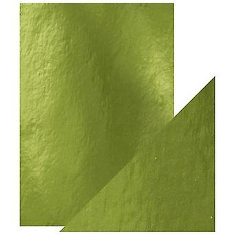Handwerk perfekte Tonic Studios A4 Spiegel Karte High Gloss Holly Green Pack von 5