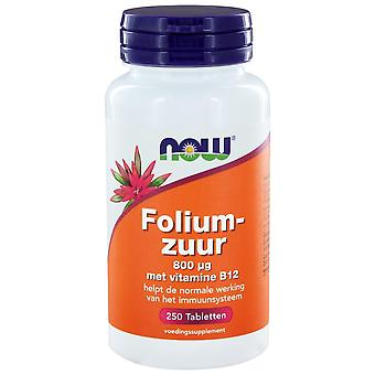 Foliumzuur 800 g (250 onglets) - NOW Foods