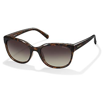 Polaroid PLD4030/S Q3V/LA Dark Havana/Brown Gradient Polarised Sunglasses