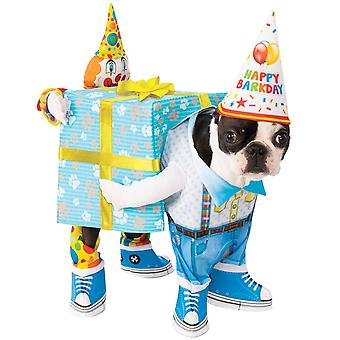 Rubies Halloween Fancy Dress Pet Costume - Birthday Present