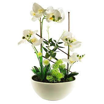 55cm Artificial Blossoming Orchid Display in Ceramic Planter