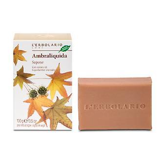Ambraliquida Soap 100 g