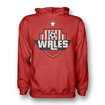 Wales Land Logo Hoody (rood)
