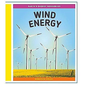Energia eólica (recursos de energia da terra)