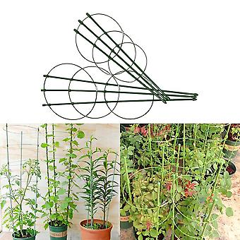 Durable Creative Climbing Vine Rack Plastic Coated Iron Plant Support Frame