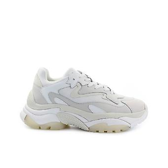 Ash Addict White Sneaker