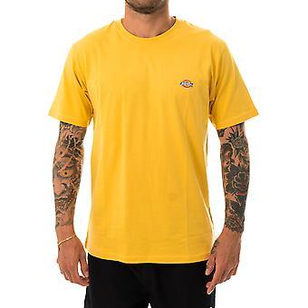 Dickies Stockdale Camiseta masculina dk621578apr