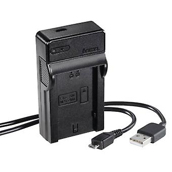 Chargeur USB Hama Travel pour Sony NP-FZ100