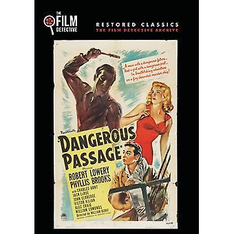 Dangerous Passage [DVD] USA import