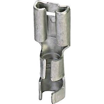 Receptáculo de Phoenix Contact 3240159 lâmina largura do conector: 6,3 mm espessura do conector: 0,8 mm 180 ° não isolada o Metal 100 PC (s)