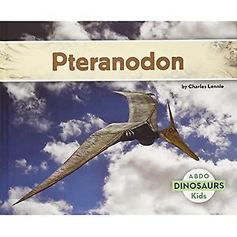 Pteranodon (Abdo Kids: dinosaurussen)