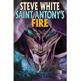 St Antony's Fire av Steve White (Bok, 2009)
