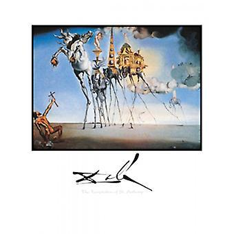 Die Versuchung des St Anthony Poster Print von Salvador Dali (22 x 28)