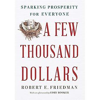 Een paar duizend dollar: Vonken welvaart voor iedereen