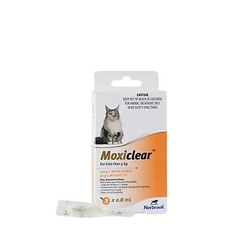 MOXICLEAR Katze > 4kg 3PK Orange
