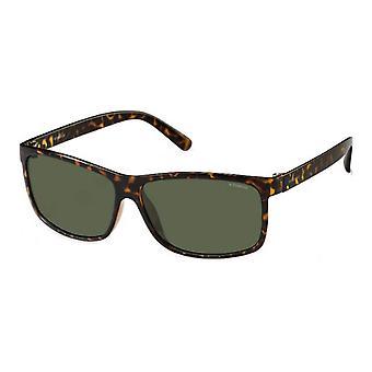 Polaroid Original Männer Frühling/Sommer Sonnenbrille - braun Farbe 29737