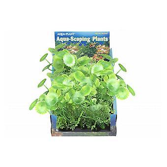Penn Plax Pennywort Bunch Plant Medium - 1 count