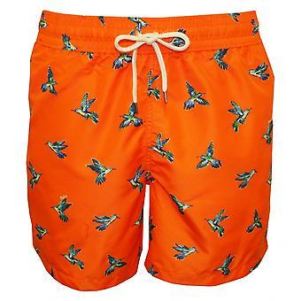 Polo Ralph Lauren Hummingbirds Traveller Swim Shorts, Orange
