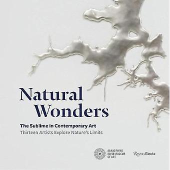 Naturwunder - das erhabene in der zeitgenössischen Kunst - dreizehn Künstler Ex