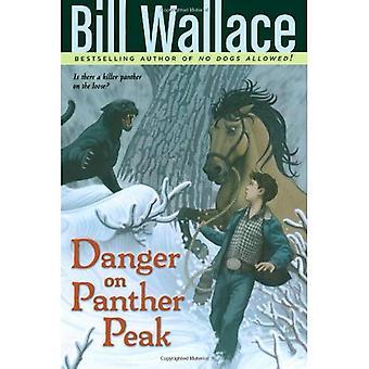 Perigo no pico de Pantera