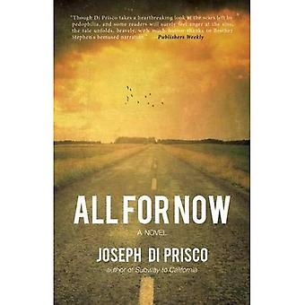 All for Now: A Novel