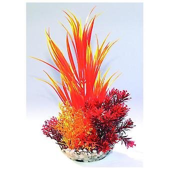 Sydeco Composition Kelp Colour (Fish , Decoration , Artificitial Plants)