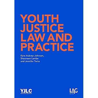 Youth Justice Law and Practice by Kate Aubrey-Johnson - 9781908407320