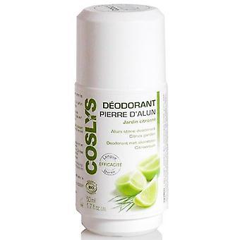 Coslys Alum Citrus Deodorant