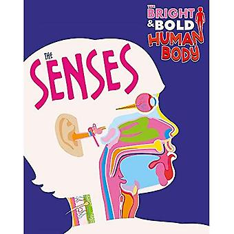 The Bright and Bold Human Body: The Senses (The Bright and Bold Human Body)
