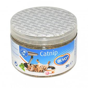 Duvo+ Catnip Cat Grass 30 Gr (Cats , Cat Nip, Malt & More)