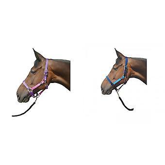 Hy Metallic Look Head Collar