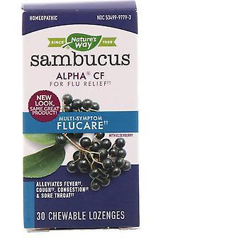 Naturens vei, Sambucus FluCare, Multi-Symptom Flu Relief, Elderberry, 30 Chewabl