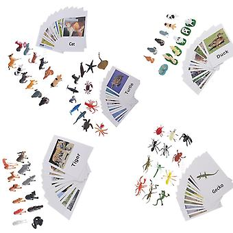 60 Pieces Wild Animal Model Card